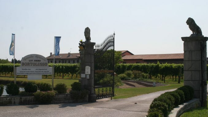 Cav. Emiro Bortolusso - Wein aus Friaul - goodstuff AlpeAdria - © Gustav Schatzmayr