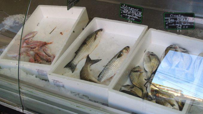 Fischmarkt Grado - goodstuff AlpeAdria
