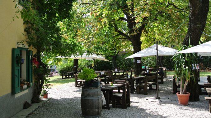 Im DVOR-Garten - goodstuff AlpeAdria