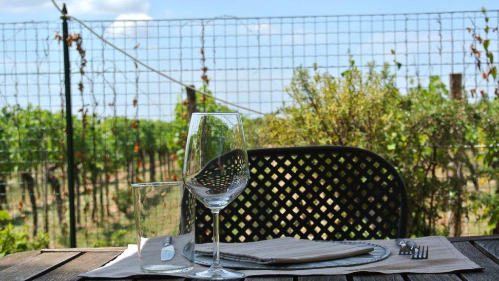 Am Rande des Weingartens - goodstuff AlpeAdria