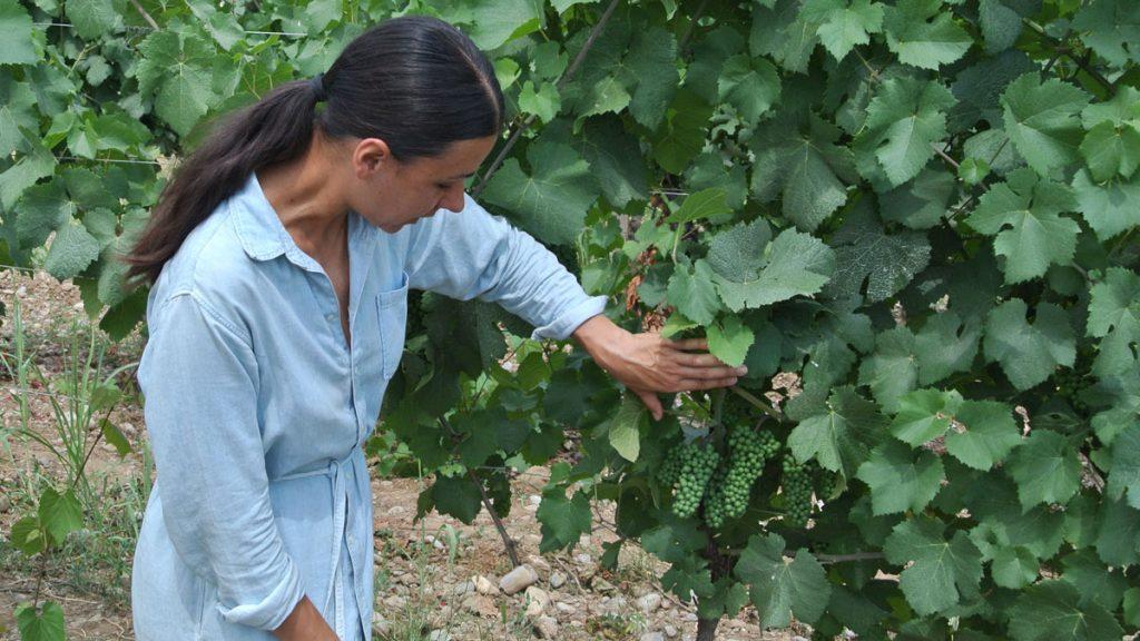 Jelena und der Wein - goodstuff AlpeAdria